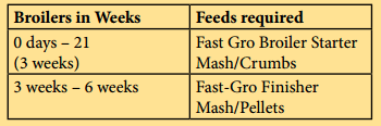 Feeding Schedule for Broilers