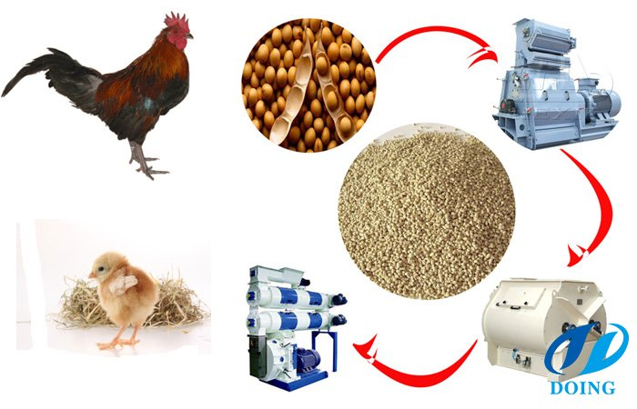 Formulating Poultry Feeds